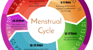 Your periods may come early or late. Credit:Pulse News