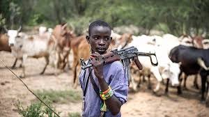 Fulani herdsmen attack man abduct the other