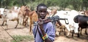 Herdsmen shot woman in the head