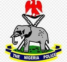 Lagos police release lady involved in office sex